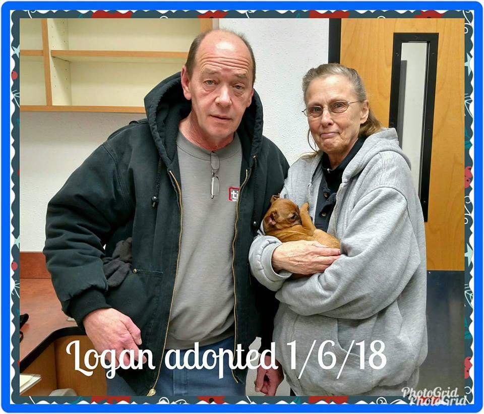 Logan Adopted