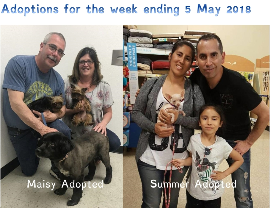 Adoptions for the week ending 5 May 2018