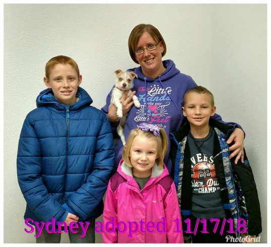 Sydney adopted