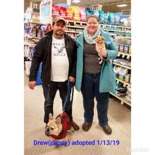 drew adopted 13 jan