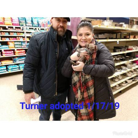 turner adopted 17 jan