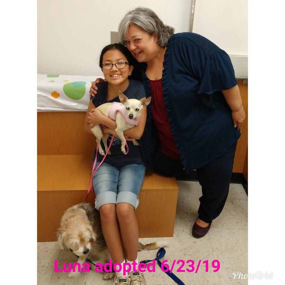 Luna adopted 20190623