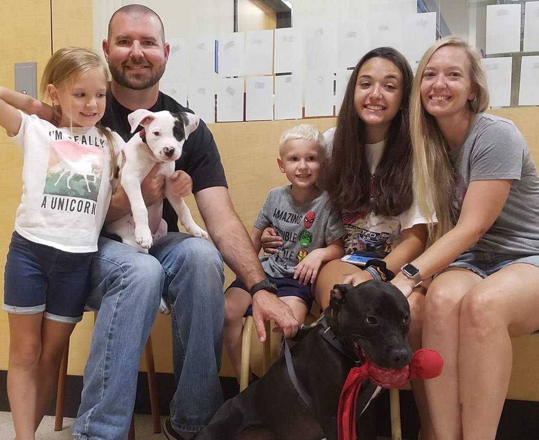 Rocky adopted