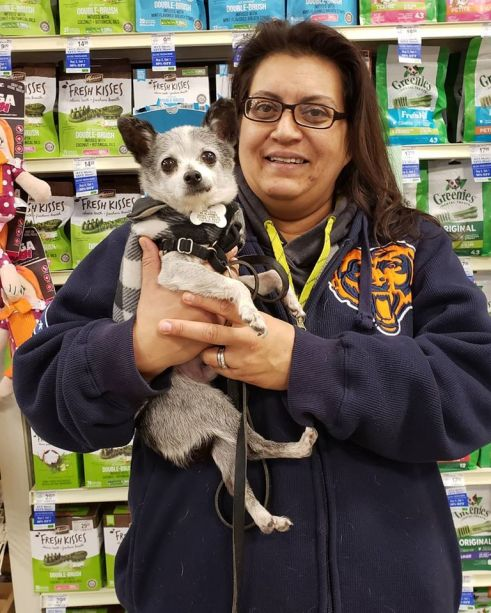 Theodore adopted