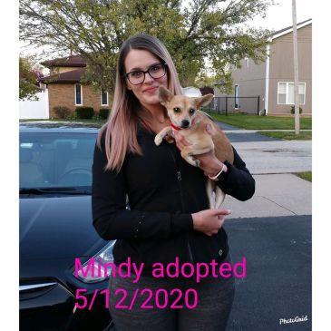 Mindy 20200512