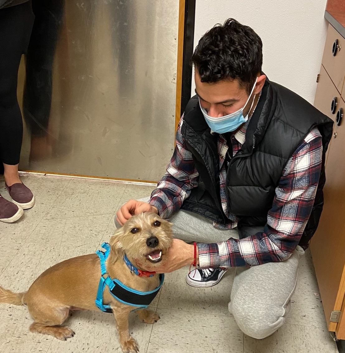 Frankie Adopted