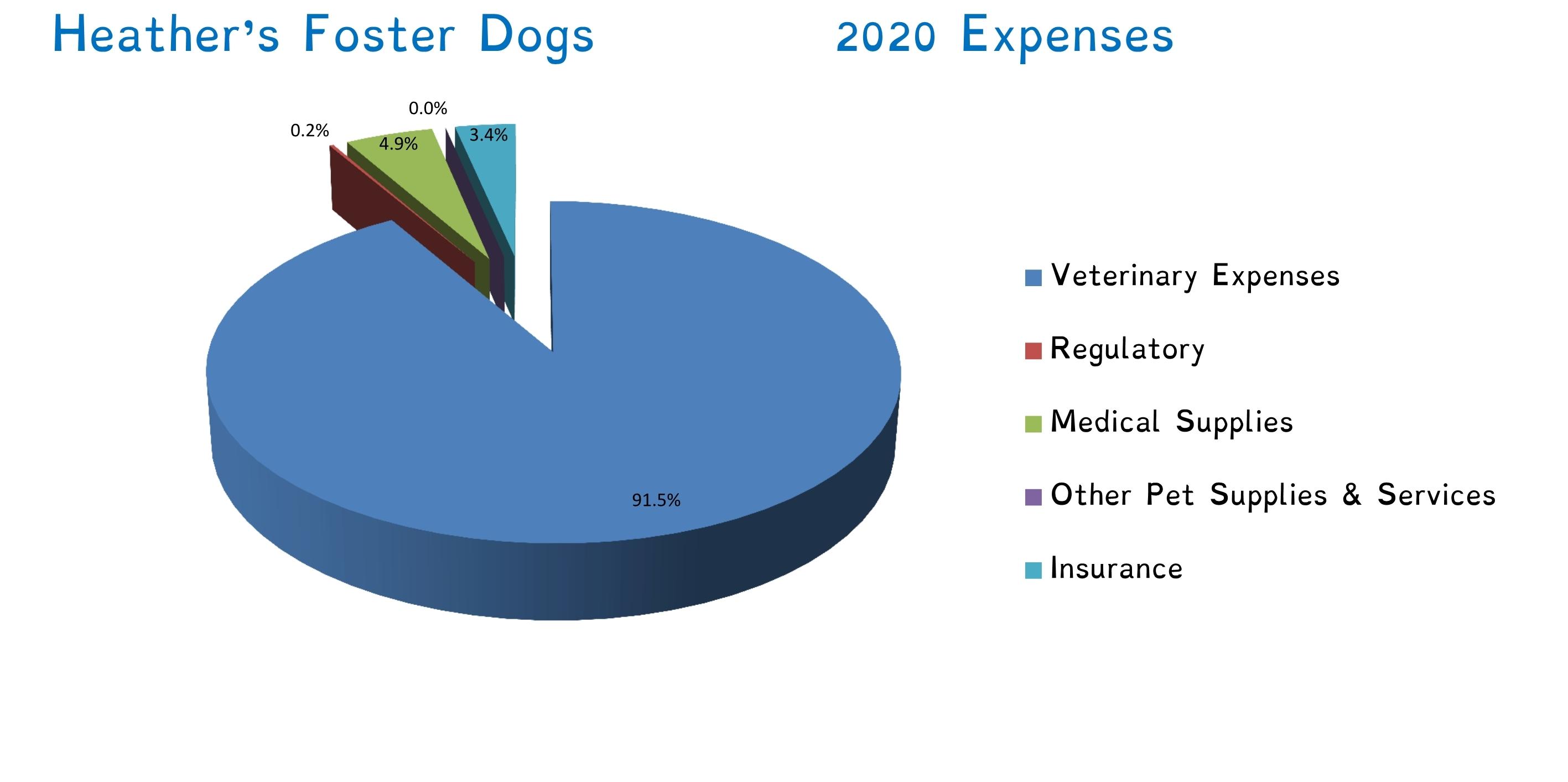 2020 Expense Graph